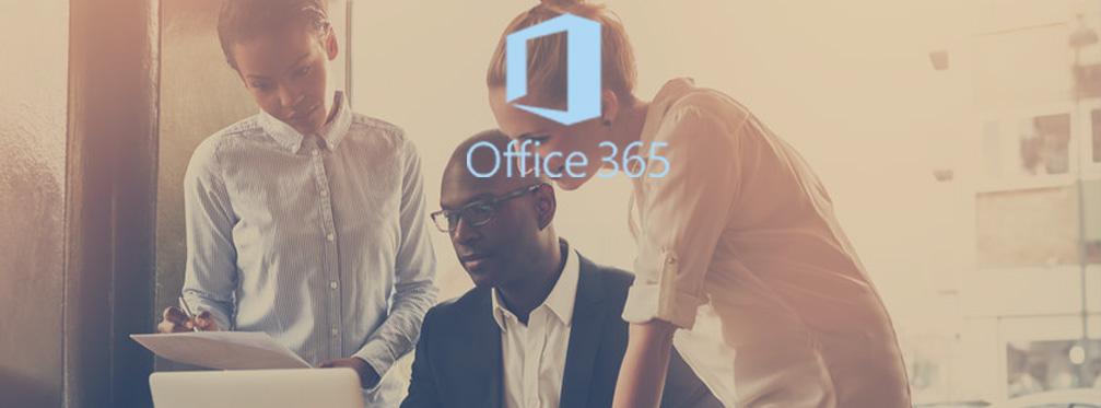 ms-365-block-2-teamwork.jpg